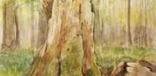 木下美香 野の花を描く教室展